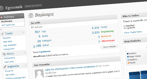 wordpress-egonomik