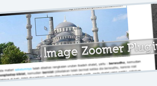 wp-image-zoomer-plugin