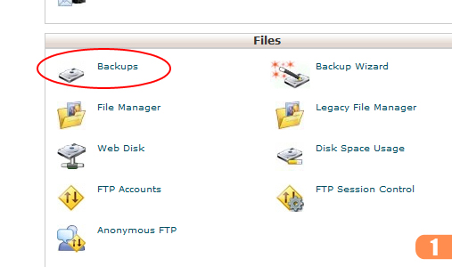 cpanel-site-transfer-1