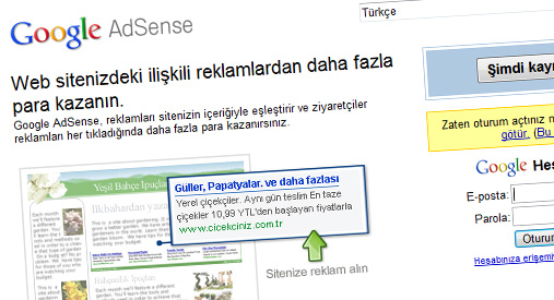 google-adsense-screen